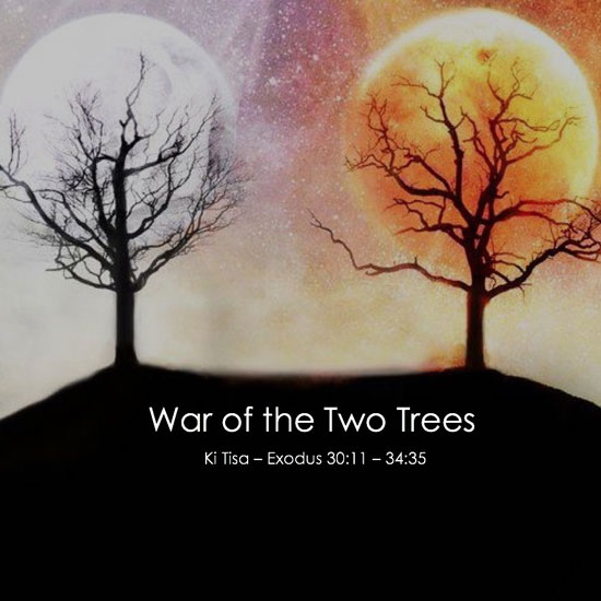 War of the Two Trees title slide