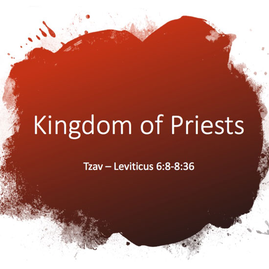 Reino de sacerdotes título de la diapositiva