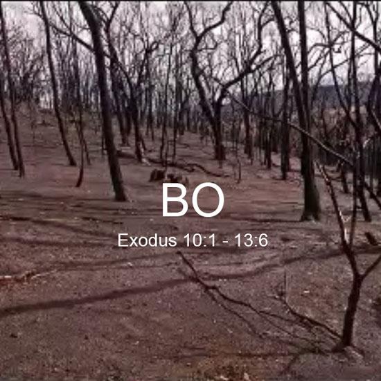 BO 2020 title slide